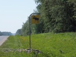 На трассе множество таких знаков