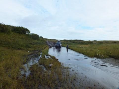 Спуск к реке был каменист, сразу лужа небольшая
