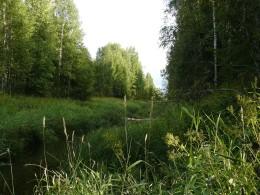 12 км Северо-Екатерининского канала