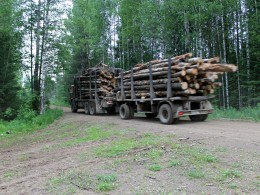 Лесовозники мотаются постоянно.