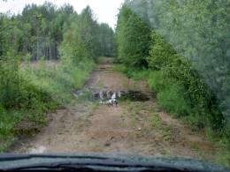 2-3 засадных места на последних км.