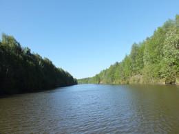 Топорнинский канал соединяет старое русло Шексны с Сиверским озером