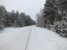 Бесовский лес